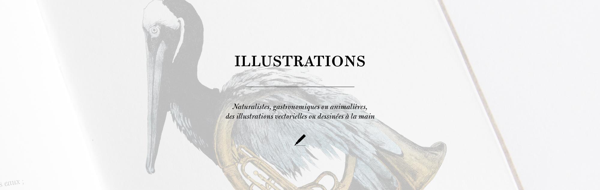 Bannière_générale4-illustration8